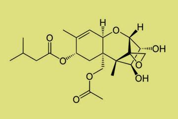 Estructura molecular de la micotoxina HT2